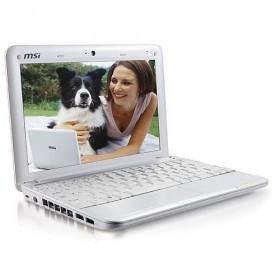 MSI U100 플러스 넷북