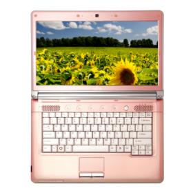 Fujitsu LifeBook LH700 Notebook