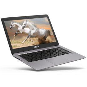 ASUS ZenBook UX310UQ portable